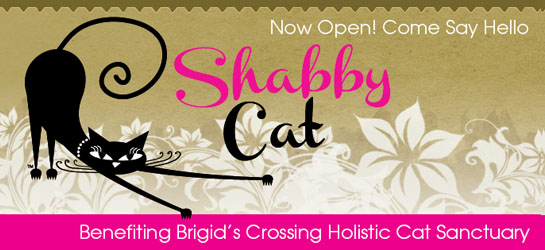 Shabby Cat Shop